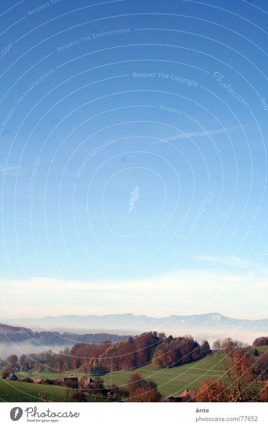 weitblick Herbst Verlauf Wald Hügel Nebel Nebelmeer Bergkette stahlblau Sonne Jahreszeiten Leichtigkeit Baum Hochformat Himmel Schweiz November Jura