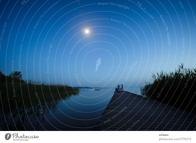 Mondscheinsteg #3 Natur blau schön Sommer Erholung Landschaft schwarz dunkel kalt sprechen natürlich See Horizont glänzend nass Schönes Wetter