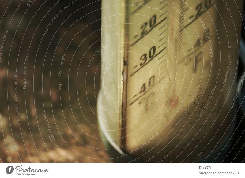 -30 | So kalt wird's erstmal nicht ... harmonisch Messinstrument Thermometer Außenthermometer Grad Celsius Temperatur Skala Anzeige Umwelt Klima Wetter Garten