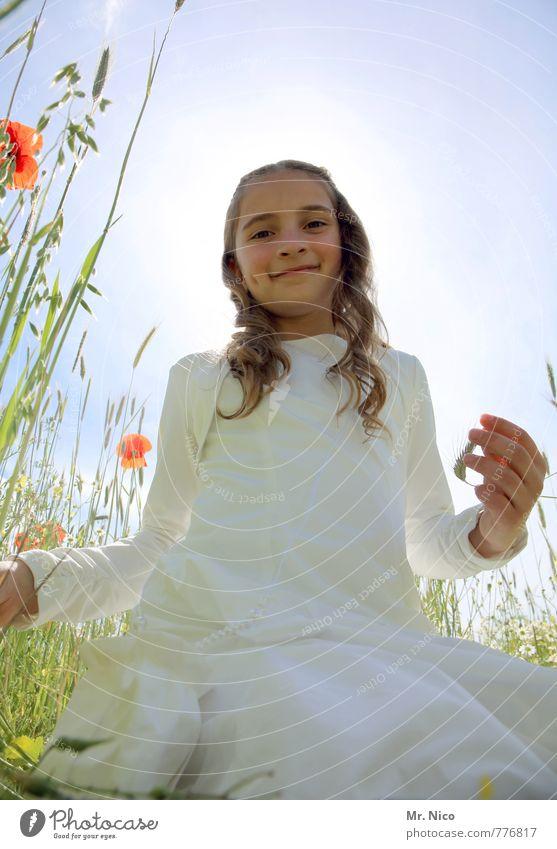 blonder engel Mensch Kind Natur schön Pflanze weiß Sommer Blume Mädchen Umwelt Wiese feminin Gras natürlich Glück Garten