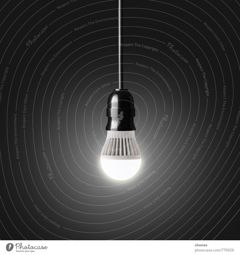 Natur schwarz Umwelt Lampe hell Energie Kreativität Idee Technik & Technologie erleuchten Generation hängen ökologisch Inspiration sparen Entwurf