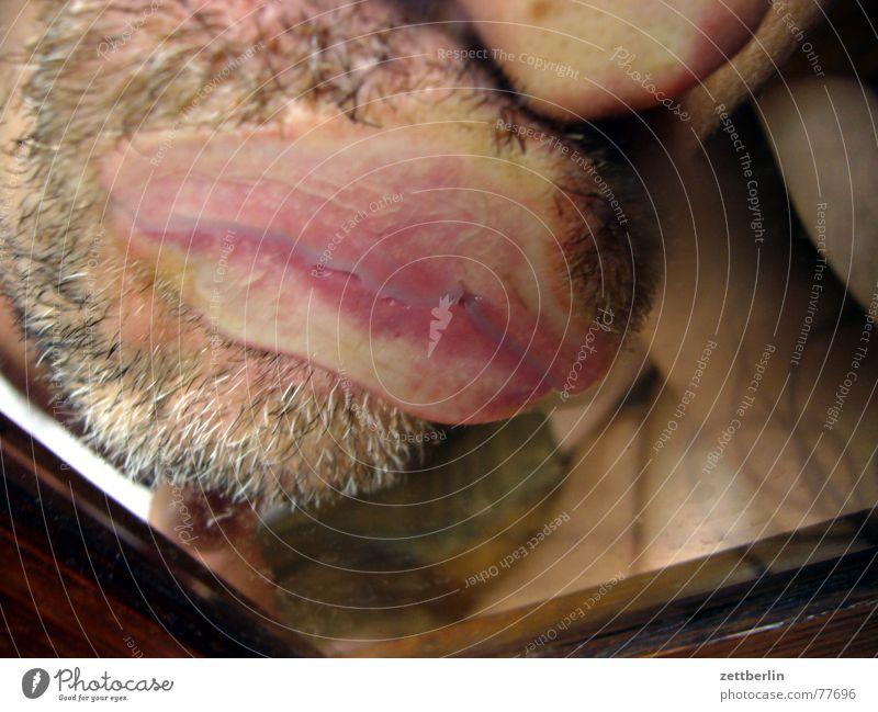 Kuss / 200 Küssen Lippen Schleimhaut Bart drücken rosa Dreitagebart Nassrasur Rasierklinge schleimig Spiegel Reflexion & Spiegelung abgerutscht Schmollmund