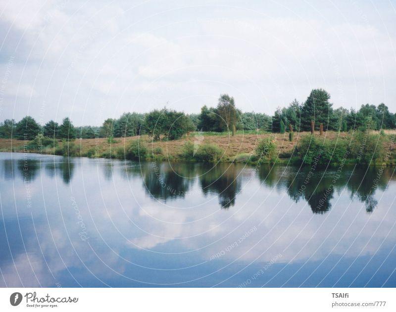 Spiegel der Natur Reflexion & Spiegelung See grün Heide Wasser