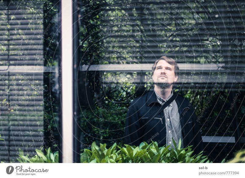 Mensch Natur Jugendliche Mann Baum 18-30 Jahre Junger Mann Fenster Erwachsene Leben Architektur Gebäude Garten träumen Arbeit & Erwerbstätigkeit maskulin