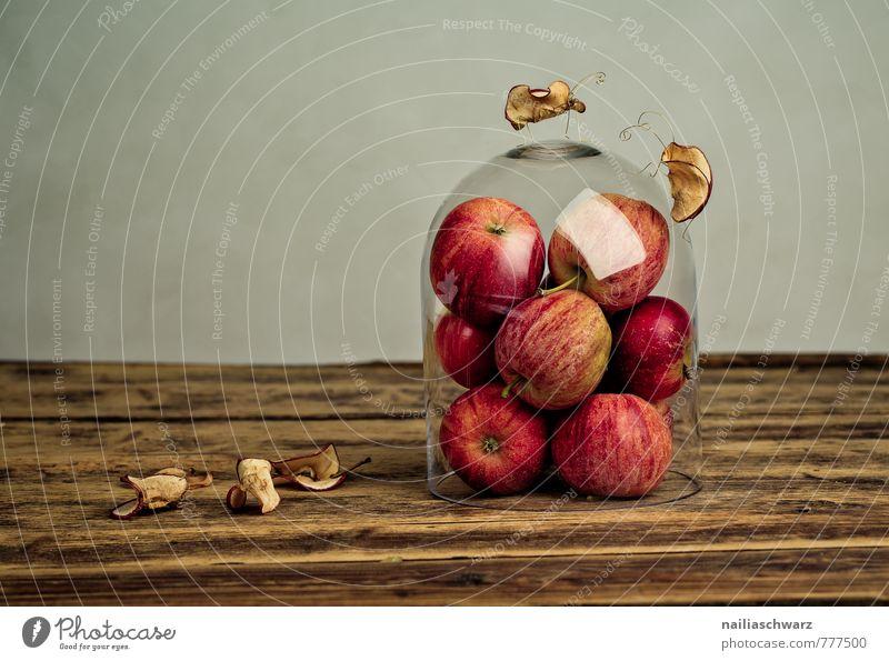 Apfelkäfer rot Tier lustig Lebensmittel Zusammensein Zufriedenheit Dekoration & Verzierung Glas Fröhlichkeit Ernährung Kreativität einzigartig niedlich Neugier