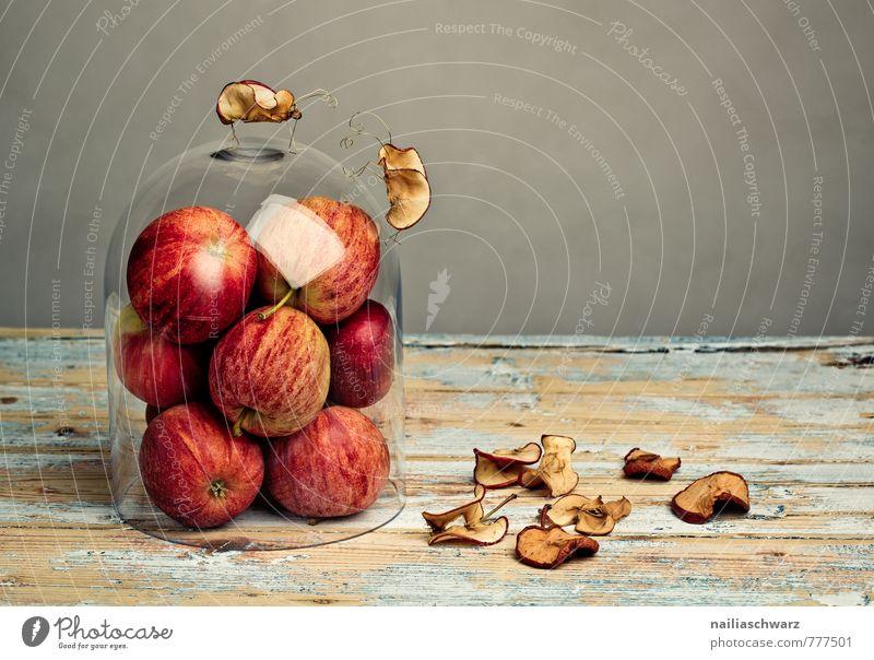 Apfelkäfer schön rot Tier natürlich grau Holz außergewöhnlich Frucht Fliege beobachten Kommunizieren niedlich einfach Ziel Zusammenhalt Apfel