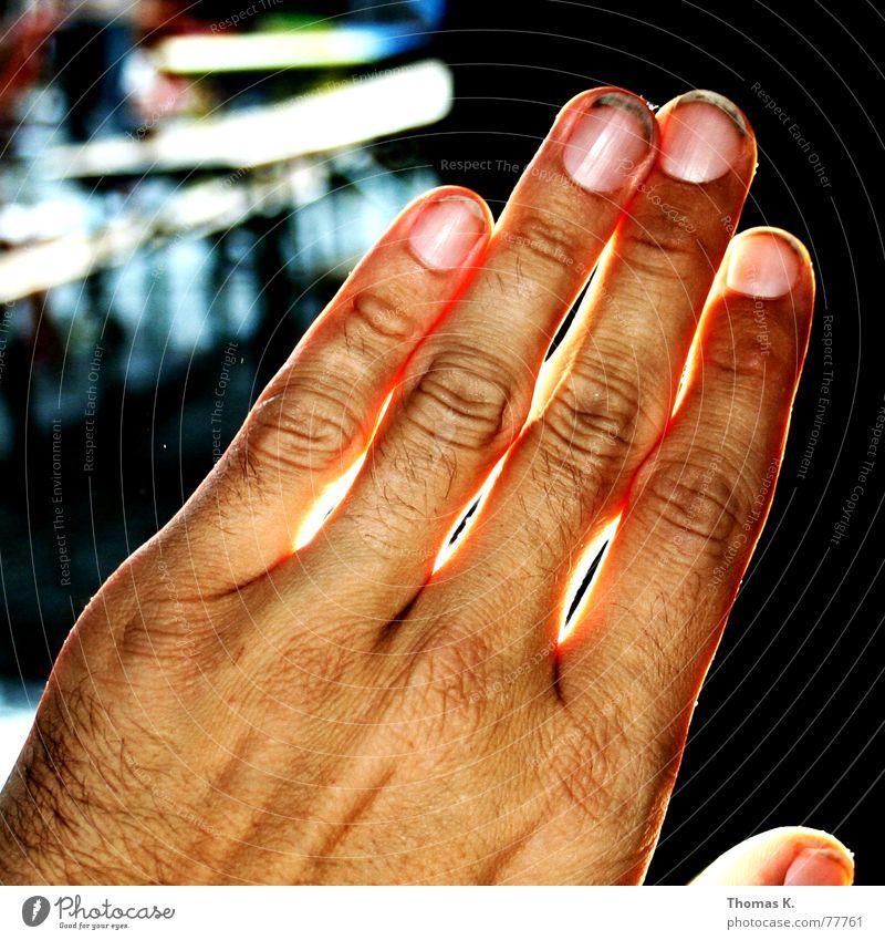 Handlich(t) klein Licht Finger Daumen Zeigefinger Mittelfinger Ringfinger Arbeit & Erwerbstätigkeit Fingernagel dreckig work dust dirt middle pinky black light