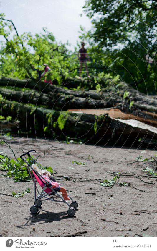 nach dem sturm Kind Natur Sommer Baum Landschaft Umwelt Spielen Park Wetter Angst Erde Wind Kindheit Sträucher Klima gefährlich