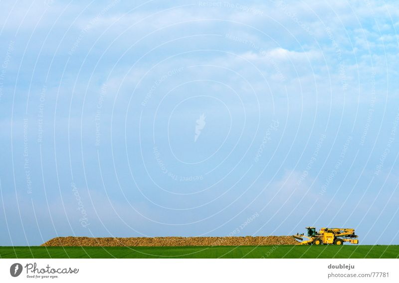 rübezahl Himmel Arbeit & Erwerbstätigkeit Herbst Feld Landwirtschaft Ernte Maschine Fahrzeug sortieren laden Ackerbau verarbeiten Automatisierung Rüben