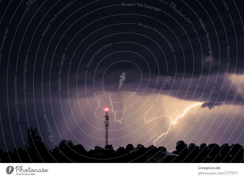 ...donnerwetter Umwelt Natur Landschaft Urelemente Himmel Wolken Gewitterwolken Nachthimmel Sommer Wetter Unwetter Sturm Blitze Pflanze Baum dunkel gigantisch