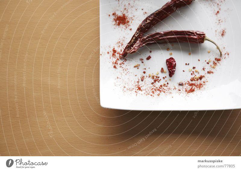 ein teller mit schärfe Tisch Buche Teller weiß rot Kräuter & Gewürze Scharfer Geschmack Schote Peperoni getrocknet feurig Natur chilli pepper Stengel Ernährung