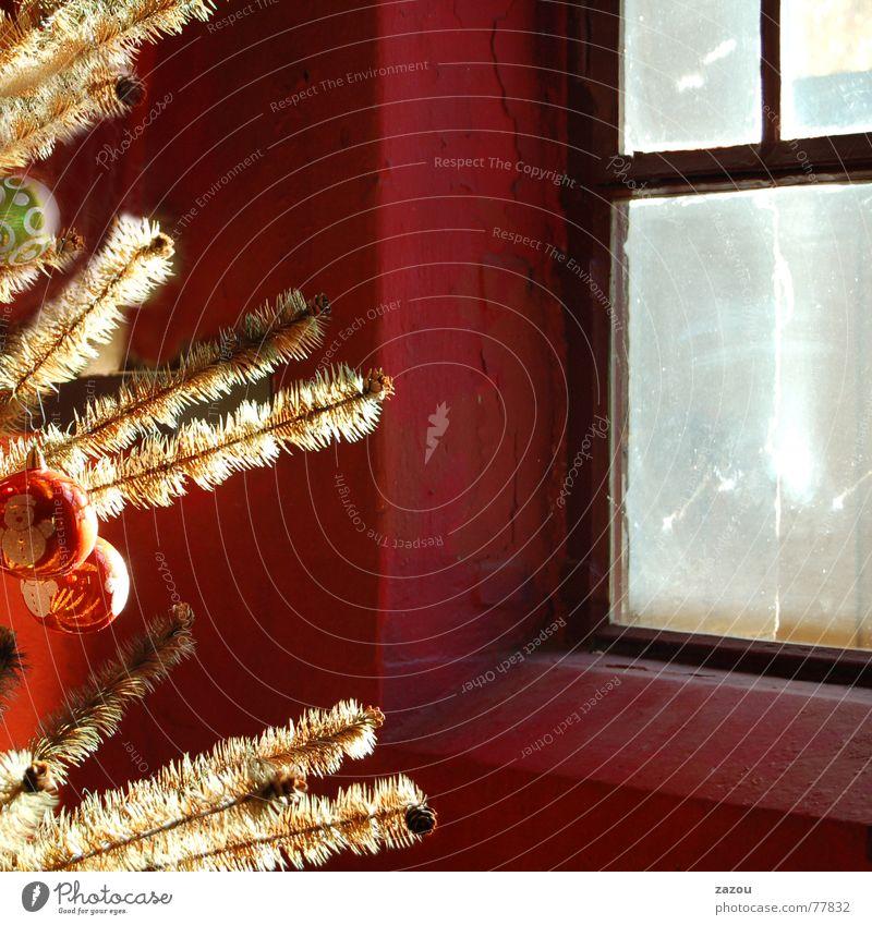 Weihnachtszauber Weihnachten & Advent ruhig Fenster träumen Religion & Glaube Feste & Feiern Weihnachtsbaum Tradition Weihnachtsdekoration