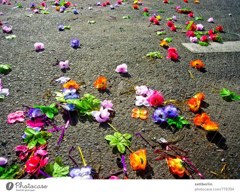 Karneval Berlin Dekoration & Verzierung Karnevel der Kulturen Karnevalskostüm Sambatänzer Parade Blume Blüte Müll Traurigkeit Rest Ende Blumenstrauß Strohblume