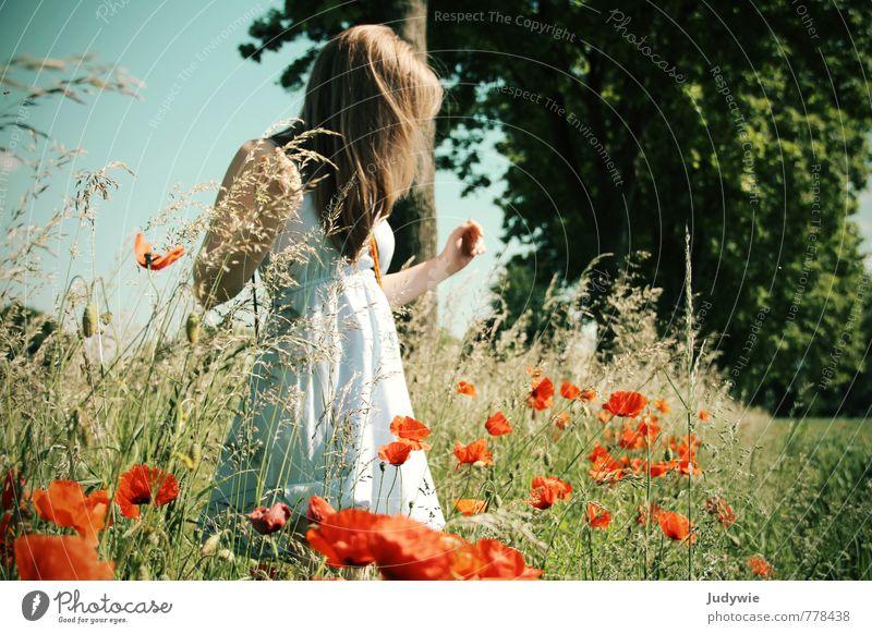 Behutsam Mensch Kind Natur Jugendliche Pflanze Sommer Junge Frau Blume ruhig Landschaft 18-30 Jahre Umwelt Erwachsene Wiese feminin Gras
