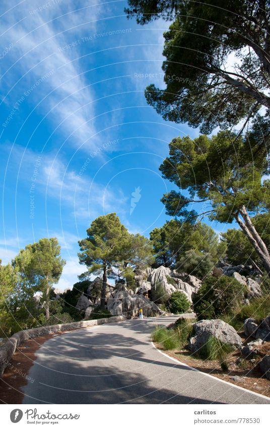 es geht aufwärts Umwelt Natur Landschaft Pflanze Urelemente Himmel Wolken Sommer Schönes Wetter Wärme Baum Felsen Berge u. Gebirge wandern Serra de Tramuntana