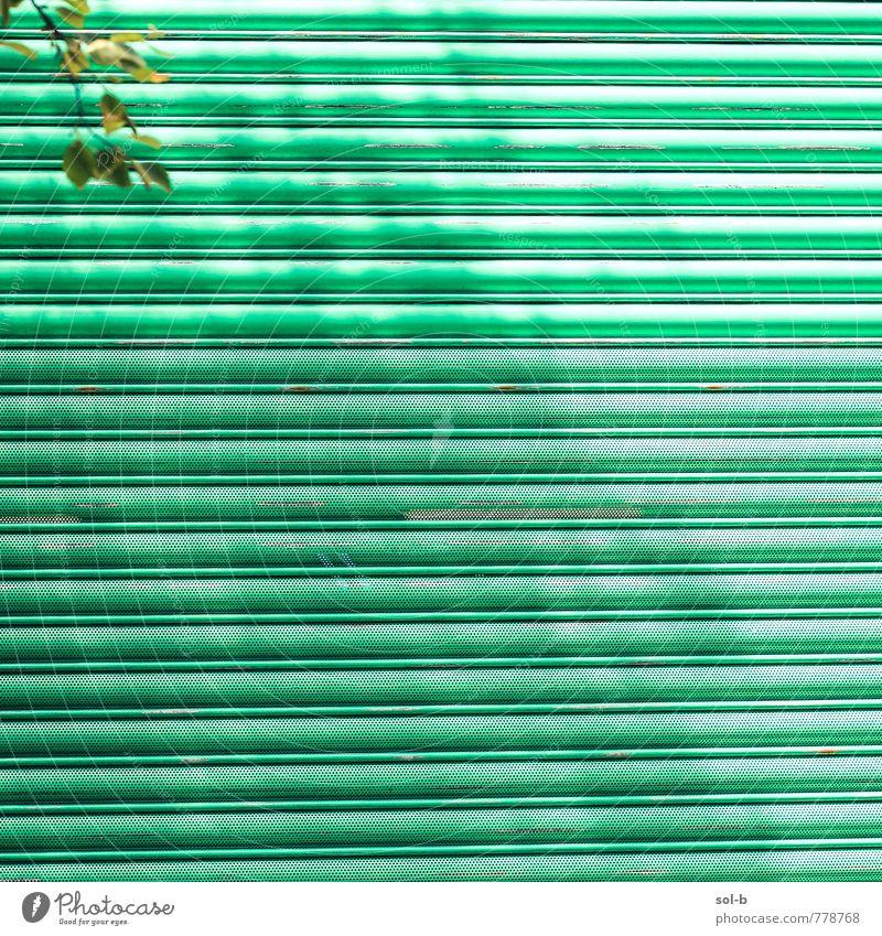 oben links harmonisch Sommer Häusliches Leben Natur Schönes Wetter Baum Blatt Tor Metall ästhetisch einfach hell grün Ecke Linie geschlossen sommerlich Sperrtor