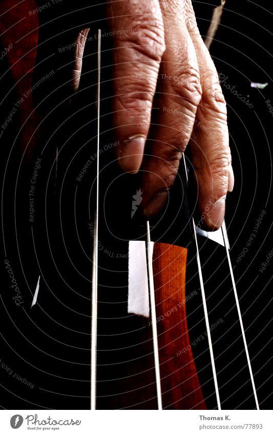 Das Bass-Spiel rot schwarz dunkel Spielen Holz Musik braun hören Konzert Loch Radio Musikinstrument singen Klang Lied Swing