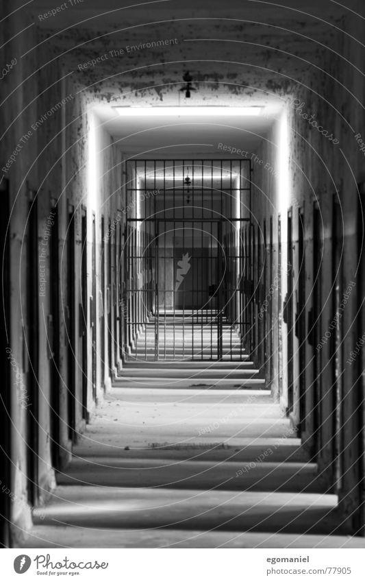 Hinter der Freiheit Konzentrationslager Krieg Massenmord falsch schwarz Licht beklemmend gefangen Deutschland historisch verfallen Schwarzweißfoto