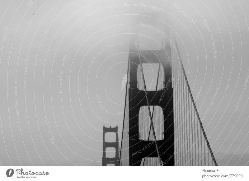 golden gate Ferien & Urlaub & Reisen Stadt oben Kraft Nebel Design Zufriedenheit groß hoch ästhetisch Brücke Bauwerk lang Stadtzentrum hängen Sightseeing