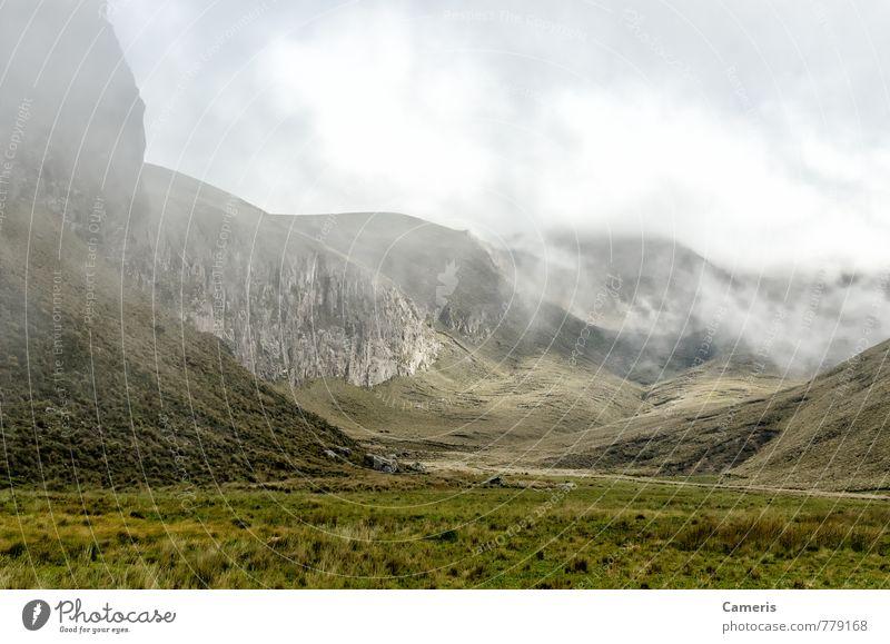 Natur Ferien & Urlaub & Reisen grün Einsamkeit Landschaft Wolken schwarz Umwelt Berge u. Gebirge Gras braun Felsen Nebel Tourismus Sträucher wandern
