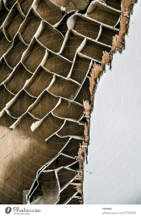 kaputt Holz alt gerissen Zerstörung Tür Holzbrett Karton Teilung Muster Strukturen & Formen Füllung Wabe Wabenmuster Riss Netz Farbfoto Innenaufnahme