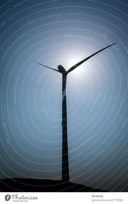 Windkraftsammler #2 Technik & Technologie Energiewirtschaft Erneuerbare Energie Windkraftanlage Umwelt Himmel Wolkenloser Himmel Sonne Sonnenlicht Frühling