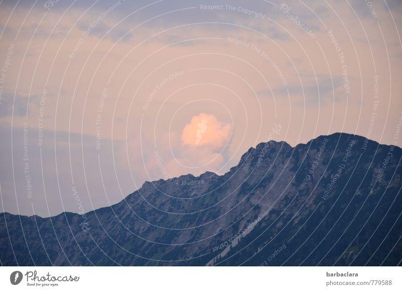 Abendwölkchen Ferien & Urlaub & Reisen Landschaft Himmel Wolken Sonnenaufgang Sonnenuntergang Klima Felsen Alpen Berge u. Gebirge Allgäuer Alpen Stimmung