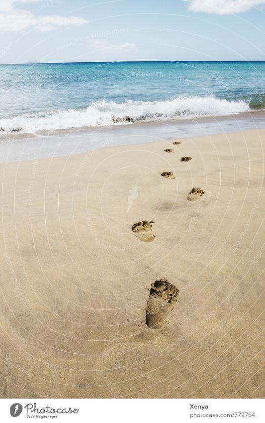 Spuren im Sand Ferien & Urlaub & Reisen Tourismus Sommer Sommerurlaub Sonnenbad Strand Meer Insel Wellen Himmel Wolken Horizont Wasser Erholung blau braun