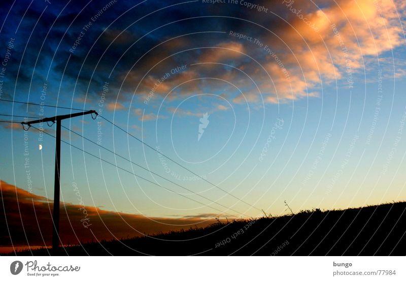 Leben Baum Wolken schlechtes Wetter dunkel bedrohlich Dämmerung Nacht Horizont Sonnenuntergang träumen Traumwelt Einsamkeit harmonisch Farbenspiel Romantik