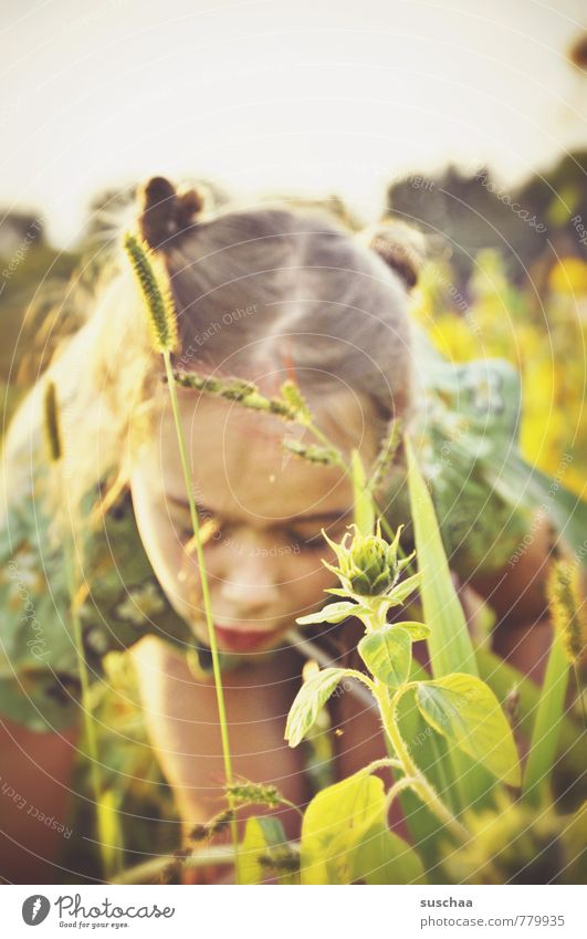 sommer 2013 Mensch Kind Natur schön grün Sommer Blume Mädchen gelb Umwelt Gesicht Auge feminin Haare & Frisuren natürlich Garten