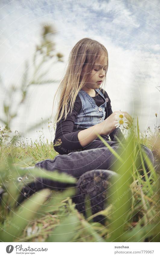 lady h . Mensch Himmel Kind Natur Jugendliche Pflanze Sommer Erholung Junge Frau Blume Wolken Mädchen Umwelt Gesicht Wiese feminin