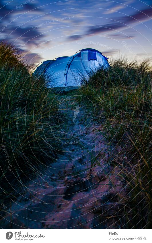 Zeltleuchten Ferien & Urlaub & Reisen Ausflug Abenteuer Ferne Freiheit Expedition Camping Sommerurlaub Umwelt Natur Pflanze Urelemente Erde Sand Himmel Wolken