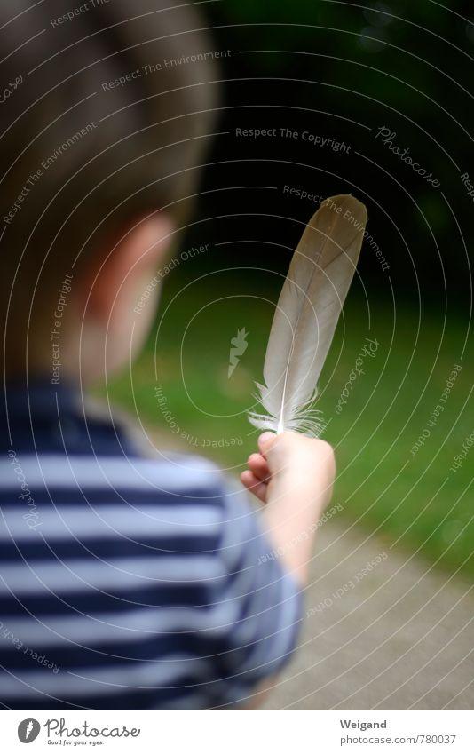 Federleicht Mensch Kind blau grün Freude Junge Spielen fliegen Wachstum Kindheit beobachten Feder berühren Sicherheit Vertrauen entdecken