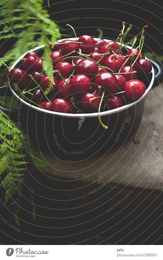 kirschen Pflanze Sommer Gesunde Ernährung natürlich Gesundheit Garten Lebensmittel Frucht frisch süß lecker Bioprodukte Vitamin Topf Vegetarische Ernährung