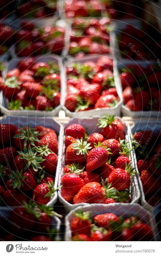 Strawberry Fields forever rot Essen Lebensmittel Frucht kaufen lecker Duft Bioprodukte Markt Erdbeeren Joghurt Fruchteis