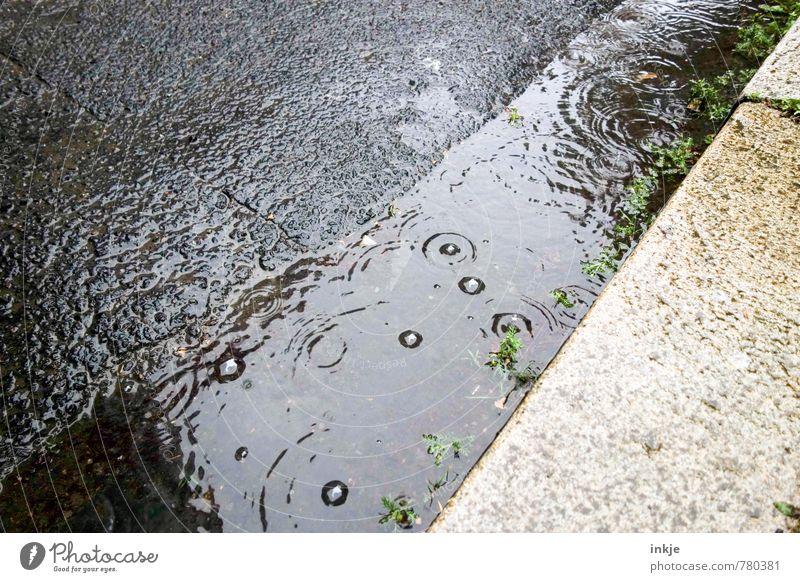 Sommerregen Umwelt Wasser Frühling Klima Wetter schlechtes Wetter Regen Pfütze Menschenleer Straße Rinnstein Straßenrand Asphalt Bordsteinkante Kreis tropfend