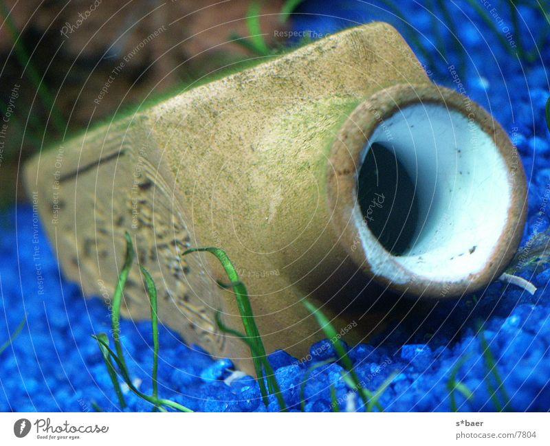 Versunkene Flasche Flasche Aquarium Unterwasseraufnahme