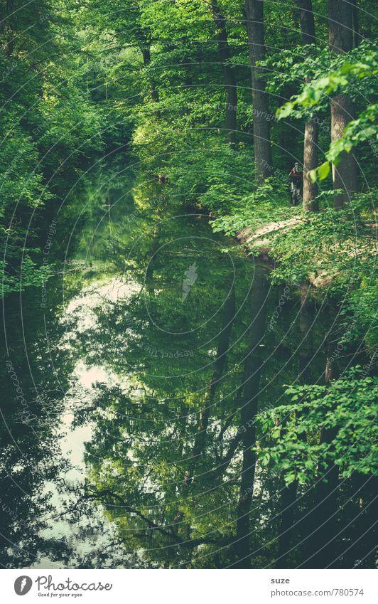 Offener Kanal harmonisch Freizeit & Hobby Umwelt Natur Landschaft Pflanze Wasser Klima Baum Park Flussufer Teich See Oase Wachstum nachhaltig grün Stimmung