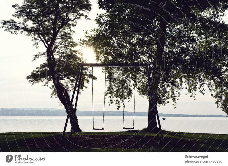 Weile doch ein wenig Leben Kinderspiel Ferien & Urlaub & Reisen Ausflug Ferne Freiheit Sommer Sonne Schaukel schaukeln Natur Landschaft Wasser Sonnenlicht