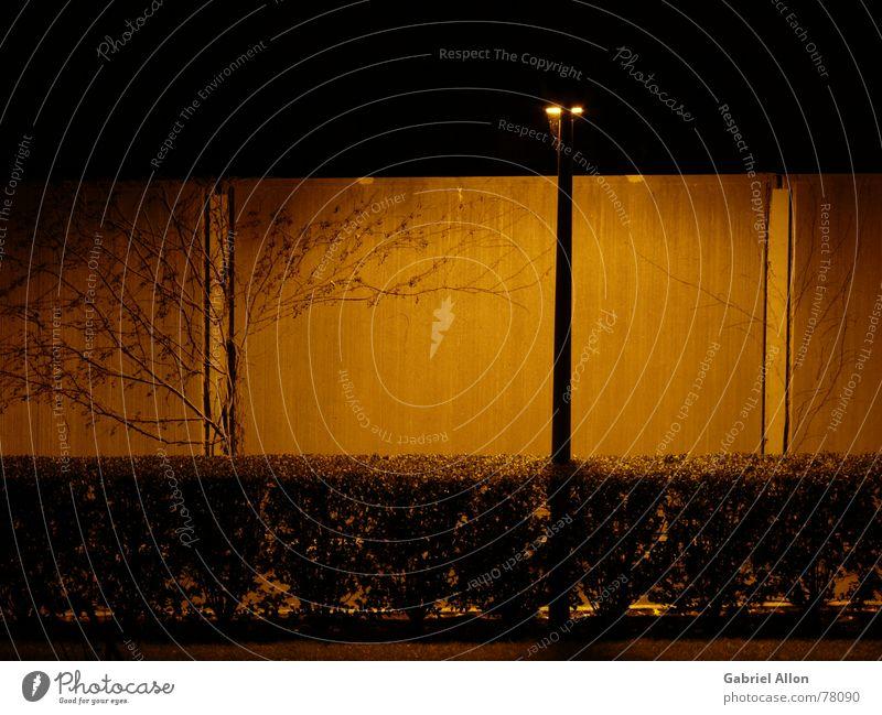 Die Schallschutzwand Schallschutzmauer Beton Hecke Straßenbeleuchtung Licht Nacht Sträucher Mauer Wand dunkel Nachtaufnahme Langzeitbelichtung blätterlos orange