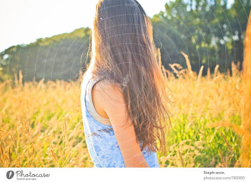 Sommer feminin Junge Frau Jugendliche Erwachsene Haare & Frisuren 1 Mensch Schönes Wetter Baum Gras Grünpflanze Wiese Feld brünett langhaarig Erholung genießen