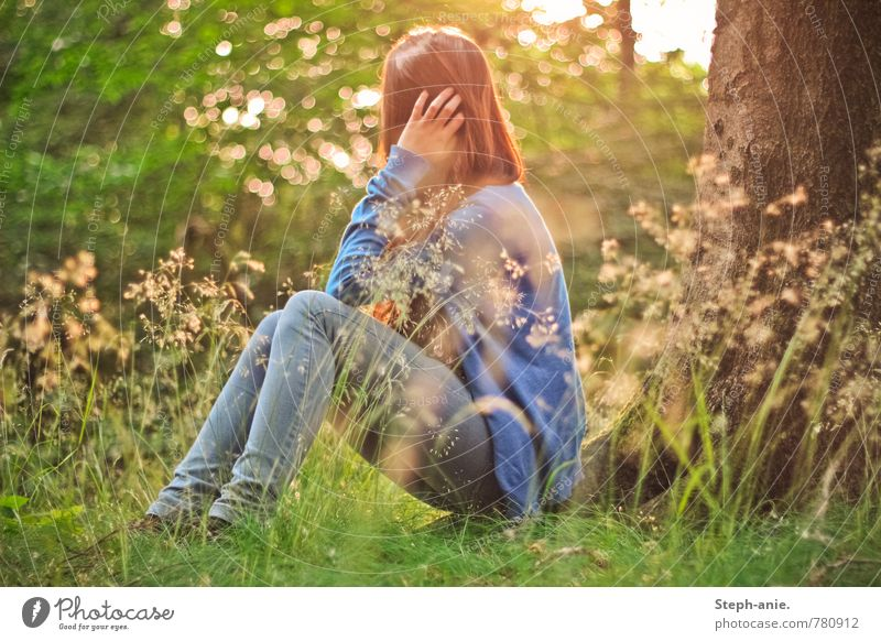 Verträumte Welt Mensch Frau Natur Jugendliche grün Sommer Baum Erholung Junge Frau ruhig Wald Umwelt Erwachsene Wiese feminin Gras