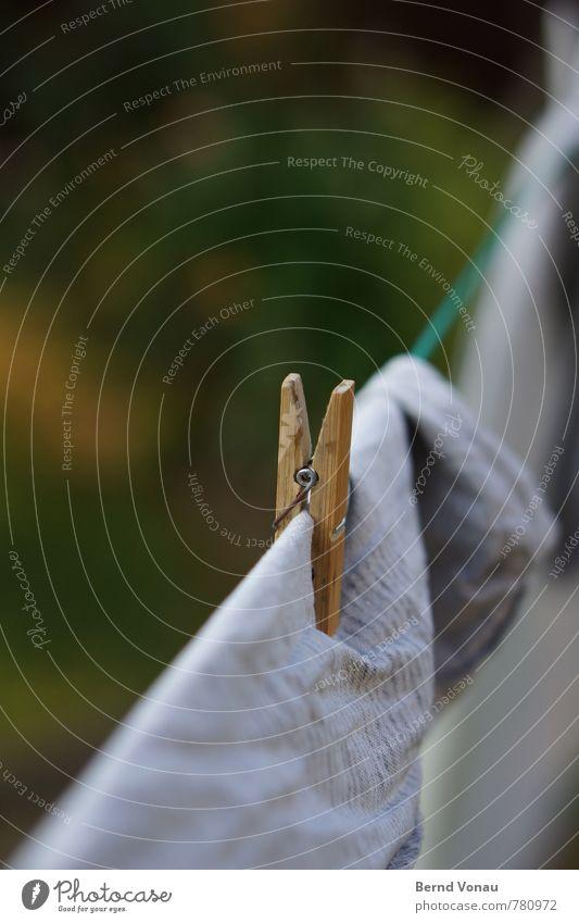 holz halt Klammer authentisch frisch Wäsche Wäscheleine Wäscheklammern trocknen hängen Bettwäsche Holz Bambus Falte grün Garten Haushaltsführung sommerlich