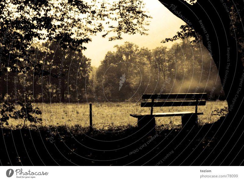 Room With A View Natur Sommer Erholung Romantik Bank Aussicht altehrwürdig