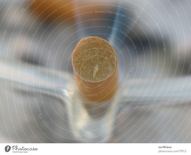 Filter Aschenbecher Zigarette Makroaufnahme Nahaufnahme Dunst