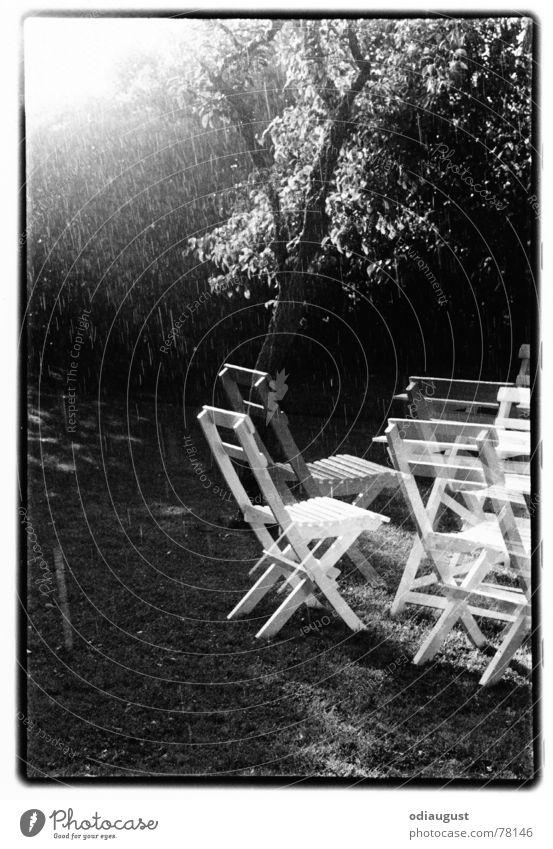 o.T. Baum Sonne Garten träumen Regen Stimmung Gartenstuhl