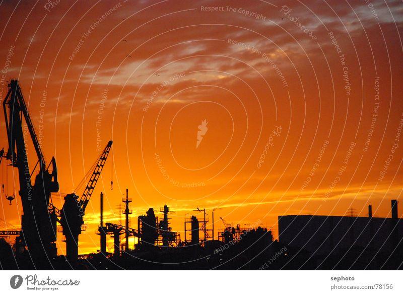 Hafensonne Himmel Sonne Herbst Horizont Mitte Hamburg Kran Lager Einkaufszentrum verwalten Farbenspiel Hafencity Stückgut