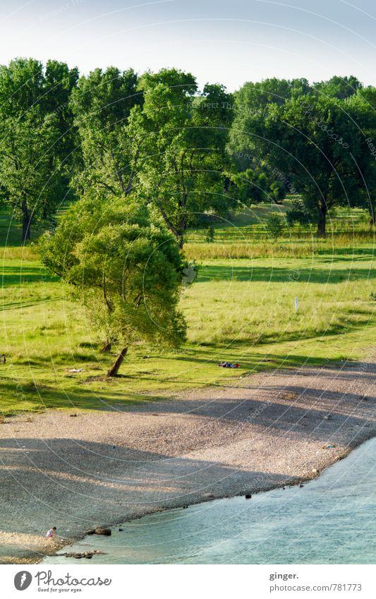Ein Sonntag, der bis Dienstag reicht... Himmel Natur blau grün Pflanze Wasser Sommer Baum Erholung Landschaft dunkel Umwelt Wiese Küste Gras hell