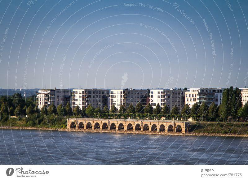 bodenständig | aber nah am Wasser gebaut Umwelt Wolkenloser Himmel Sonnenlicht Sommer Schönes Wetter Flussufer Köln Stadt Hafenstadt Skyline Haus Hochhaus