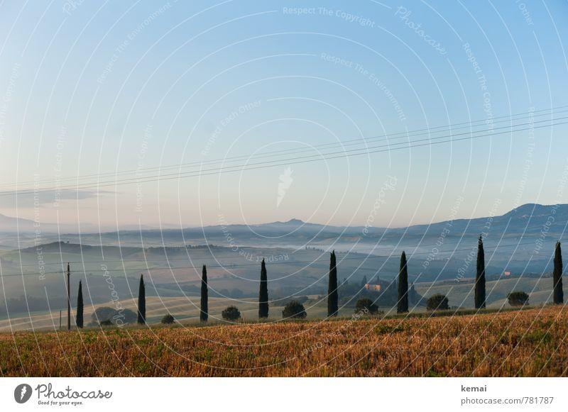 Kulturlandschaft Ferien & Urlaub & Reisen Tourismus Ausflug Ferne Freiheit Sommerurlaub Toskana Italien Umwelt Natur Landschaft Pflanze Himmel